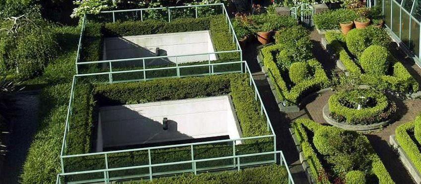 toit vegetalise