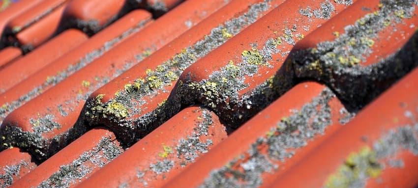 Comment nettoyer sa toiture efficacement? - Toiture Unix