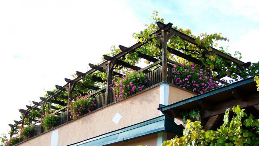 dalle pour toiture